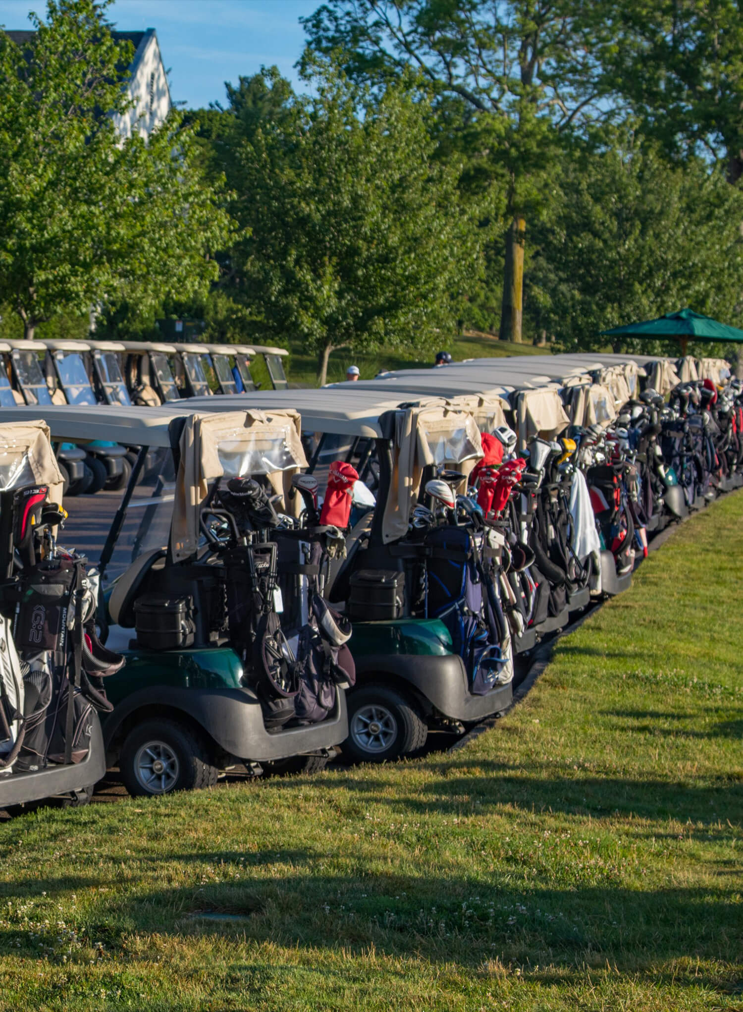 The Caddie Program